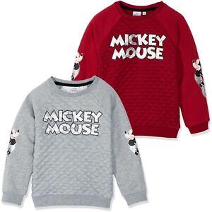 Disney-Mickey-Mouse-Boys-Warm-Character-Jumper-Hoodie-Sweatshirt-Top-2-8-years