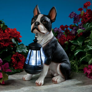 Realistic-Boston-Terrier-Dog-Garden-Sculpture-Holding-Solar-Lighted-Lantern