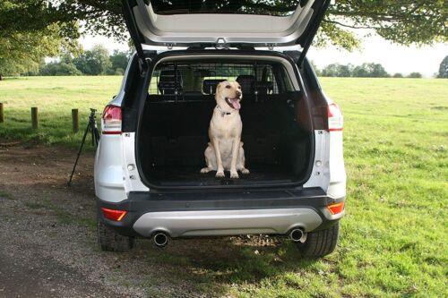 Adjustable Car Mesh Headrest Dog Guard Protectors Ford Fiesta V 2001-2010