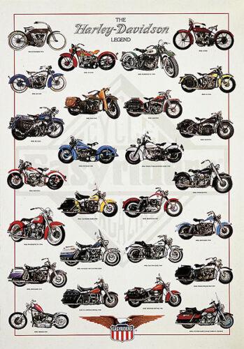 The Harley Davidson Legend by Patrignani Print Poster 26.75x38.5
