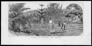 1886-Antique-Print-NEW-ZEALAND-Taranaki-Winter-Tennis-26