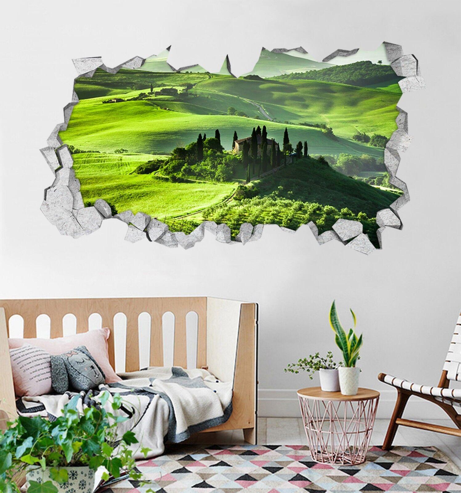 3D greene Hügel 161 Mauer Murals Mauer Aufklebe Decal Durchbruch AJ WALLPAPER DE
