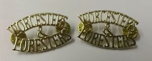 Genuine-British-Military-The-Worcester-Foresters-Shoulder-Title-Badges-NEW