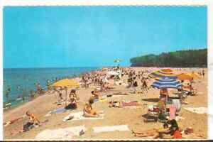Undated-Unused-Postcard-Crowd-at-Beach-6-Presque-Isle-State-Park-Erie-PA