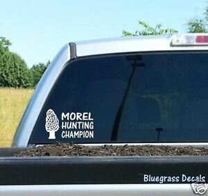 A1112 MUSHROOM MOREL HUNTING CHAMPION DRYLAND FISH Decal Sticker