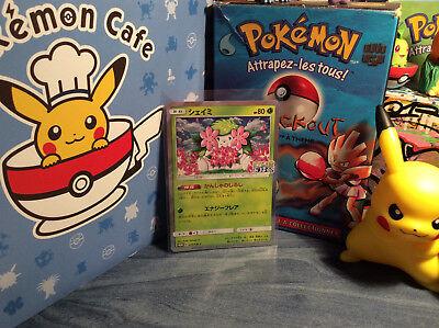 Pokemon Centre 20th Anniversary Rouge Pikachu Complet Art Promo Carte 270 Sm-P