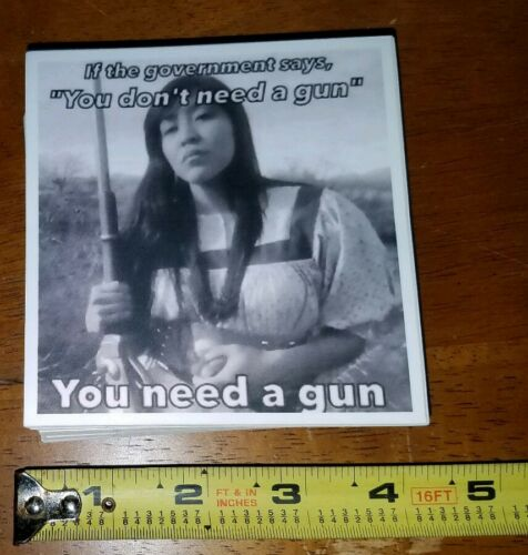 Pro 2nd Amendment Pro Native American Pro American Indian Sticker Pro Gun