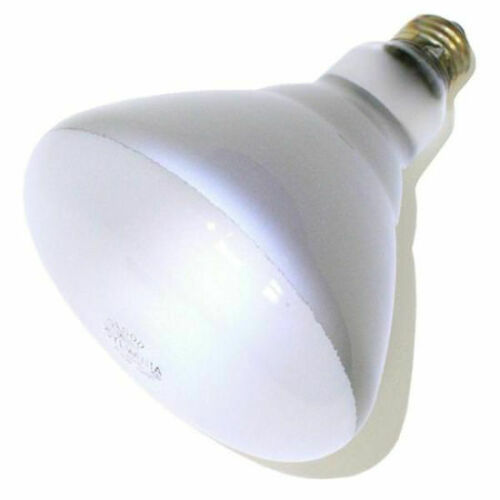 Sylvania 15332 65W Double Life Incandescent Light Bulb Case of 6