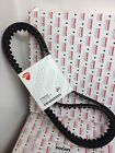 Cinghie Distribuzione Ducati Monster 821 - 73740252A Ducati Toothed Belt