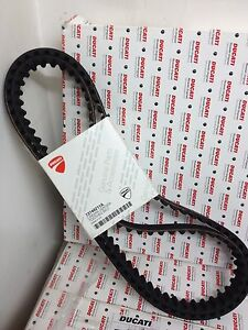 Timing Belts ducati Monster 821 - 73740252A ducati Toothed Belt