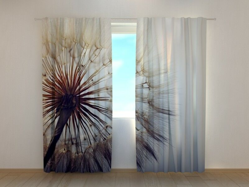 Fotogardine PusteBlaume, Vorhang mit Foto, Fotovorhang, Fensterdeko, auf Maß       Attraktive Mode  cd8a50