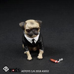 ASTOYS AS032 1/6 Simulation Pug Puppy Dog & Cigar Set Animal Model F 12'' Figure