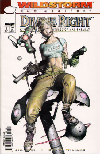 ~ DC DIVINE RIGHT COMIC BOOKS Wildstorm ASSORTED Image Comics ~ Jim Lee