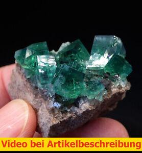 7919 Fluorit UV ca 4*5*4 cm daylight fluorescence Rogerley Mine GB 2014 MOVIE