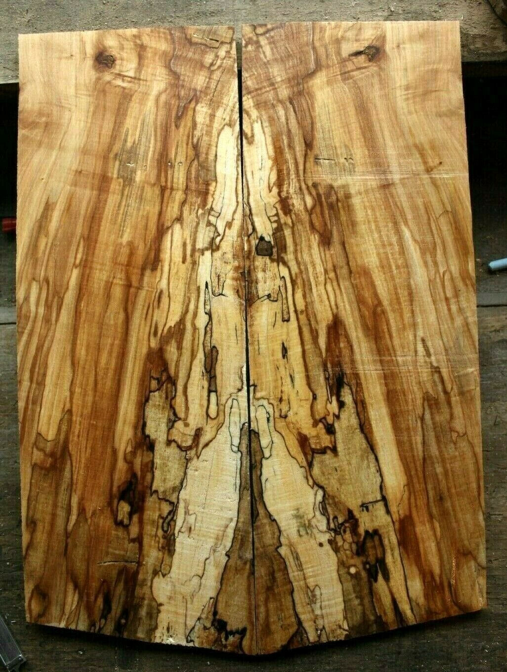 Gorgeous curly spalted ambrosia maple top .32  thk guitar bass tele strat 984