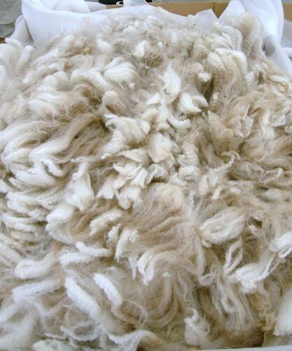 Alpaca Polaire 100/% pour la filature ou feutrage 1 kg foncé Fawn