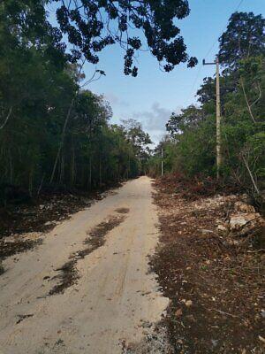 Venta de Lotes Ecologicos de 1000m2 con Titulo de Propiedad Km15 en la Ruta de los Cenotes