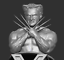 File STL for printer 3D reproduction of Wolverine in the X MEN