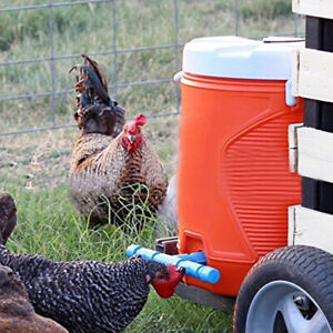 4pcs-Poultry-Chicken-Duck-Feeder-Automatic-Water-Drinking-Cup-Bowl-Drinker-Kit