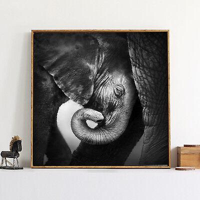 Elephant Silk Canvas Poster Art Black White Painting Wall Decor A308 Unframed