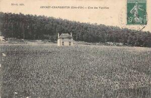 CPA-GEVREY-CHAMBERTIN-Cote-d-039-Or-Clos-des-Varoilles
