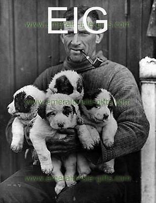 "Tom Crean Irish Explorer, 1915 - Antarctica A4 Photo Print 11.7"" x 8.3"""