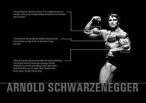 Image Is Loading MOTIVATION Print Arnold Schwarzenegger Bodybuilding  Photo Various Quotes