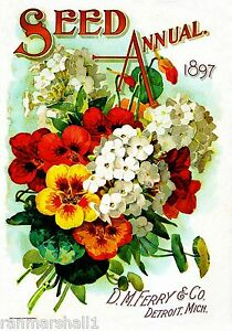 1897-Seed-Annual-Vintage-Flowers-Seed-Packet-Catalogue-Advertisement-Poster