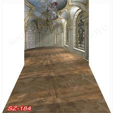 Indoor 10'x20'Computer/Digital Vinyl Scenic Photo Backdrop Background SZ184B88