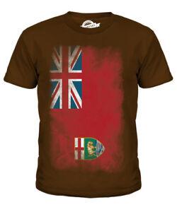 Mutig Manitoba Verblichen Flagge Kinder T-shirt Tee Unisex Jungen MÄdchen Kleinkind Zu Verkaufen