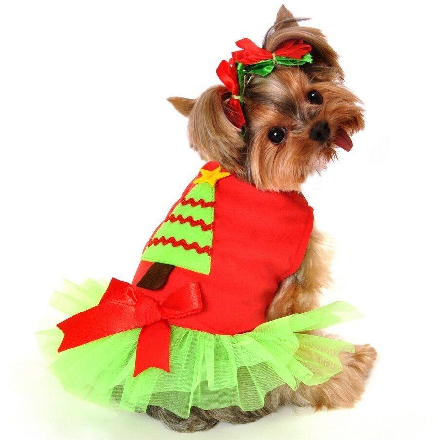 Haustier Hund Katze Weihnachtsmann Tütü Kostüm Kleid Outfit Kleidung XS-XL    Zu einem erschwinglichen Preis