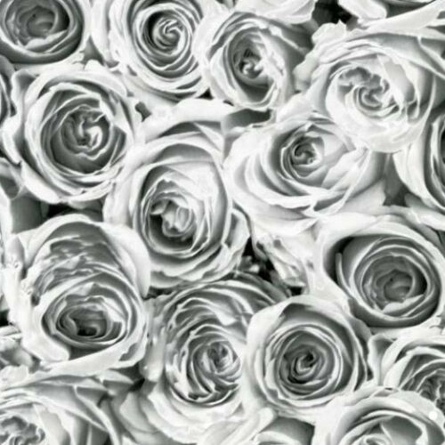 Klebefolie Selbstklebefolie Deko-Folie 12855 Blumen Rosen Roses weiss 200x45cm