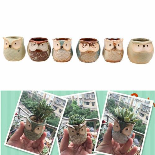 Mini Ceramic Owl Pot Succulent Plant Container Flower Planter Garden Home Decor