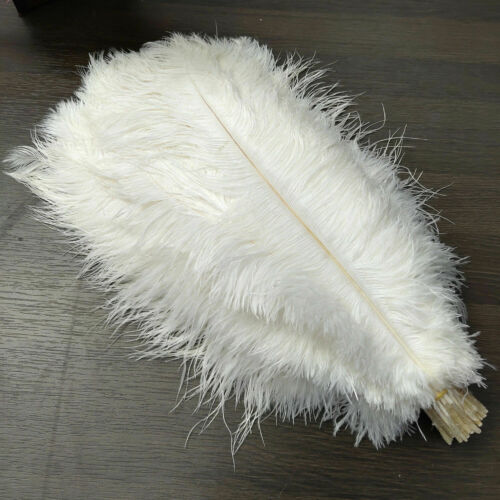 10-500pcs Natural Ostrich Feathers 6-24 inches//15-60 cm Multipurpose Decoration