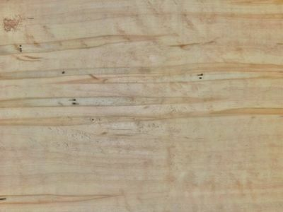 Ambrosia Maple boards lumber 1//2 surface 4 sides 12/""