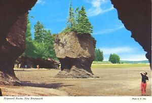 Hopewell-Rocks-Hopewell-Cape-NB-New-Brunswick-Flower-Pots-E-Otto-Postcard-D9