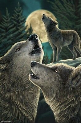 WOLF SONG FANTASY ART POSTER 22x34-17204 LISA PARKER