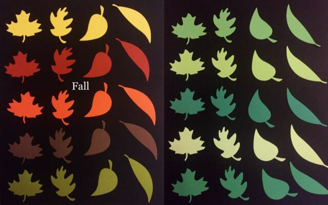 Fall Spring Leaves 20 lot color paper die cut Card Scrapbook embellishment