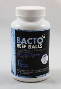 Bacto Reef Balls 250ml Fauna Marin Riff Bakterien Enzyme mit Depot 113,60€/L - Jößnitz, Deutschland - Bacto Reef Balls 250ml Fauna Marin Riff Bakterien Enzyme mit Depot 113,60€/L - Jößnitz, Deutschland