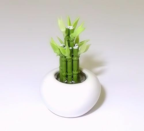 Dollhouse Lucky Asian Bamboo Plant in Ceramic Bowl 1:12 Doll House Miniatures