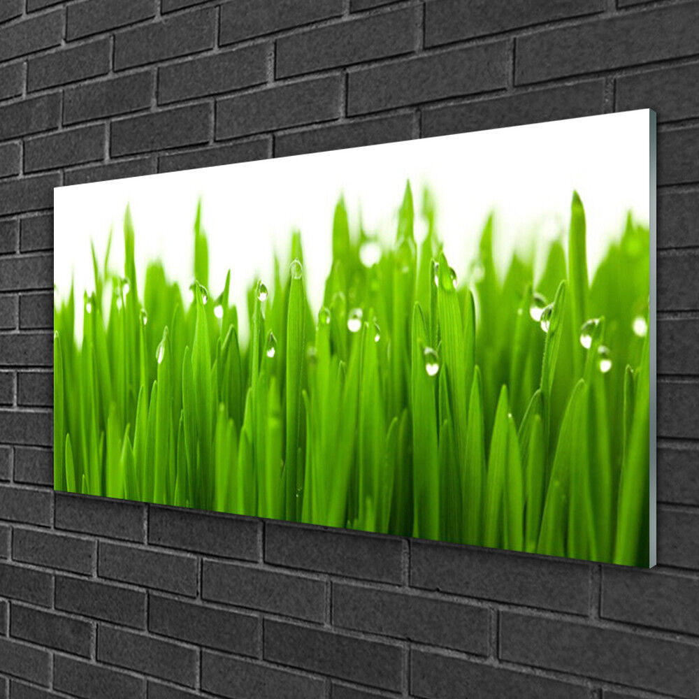 Wandbilder aus Plexiglas® Acrylglasbild 100x50 Acrylglasbild Plexiglas® Gras Natur 279ff9