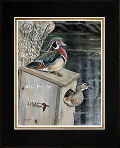 Matted-Wood-Duck-Art-Print-034-Frank-039-s-Pair-034-Waterfowl-Duck-Box-By-Roby-Baer-PSA