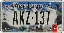 OPO 10 N31 r/éplique en m/étal : Montana Rodeo Plaque D IMMATRICULATION de Voiture USA