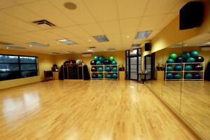 Mirror-Perspex-Plastic-Sheet-Acrylic-Home-Gym-Dance-Studio-School-1220x610x3mm