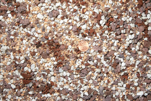 Pre Mix Lava Succulent Inorganic Additive Pumice /& Turface for Bonsai 3 Gal