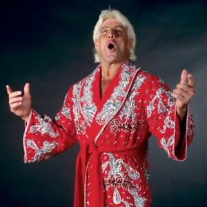 Nature-Boy-Ric-Flair-Wrestling-WWE-Unsigned-8x10-photo-B