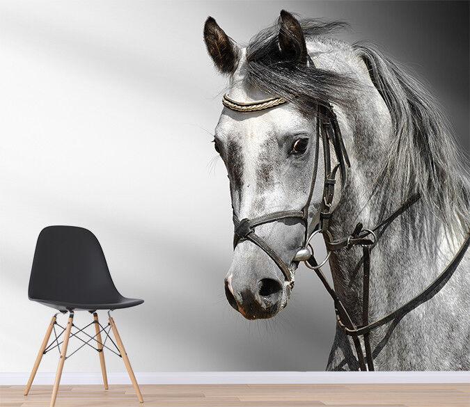 3D Handmalerei Pferd 4654 Tapete Wandgemälde Tapete Tapeten Familie Kinde DE