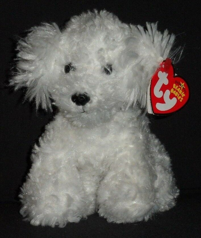 TY TY TY LOLLIPUP the BICHON FRISE DOG BEANIE BABY with TAG - SEE PICS c22a8c