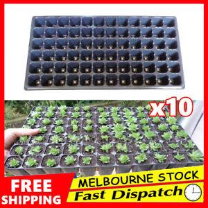 10x-72-Hole-Plant-Seed-Grow-Box-Insert-Propagation-Nursery-Seedling-Starter-Tray