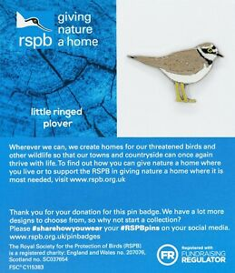 RSPB Badge ringed plover on British Wildlife Card